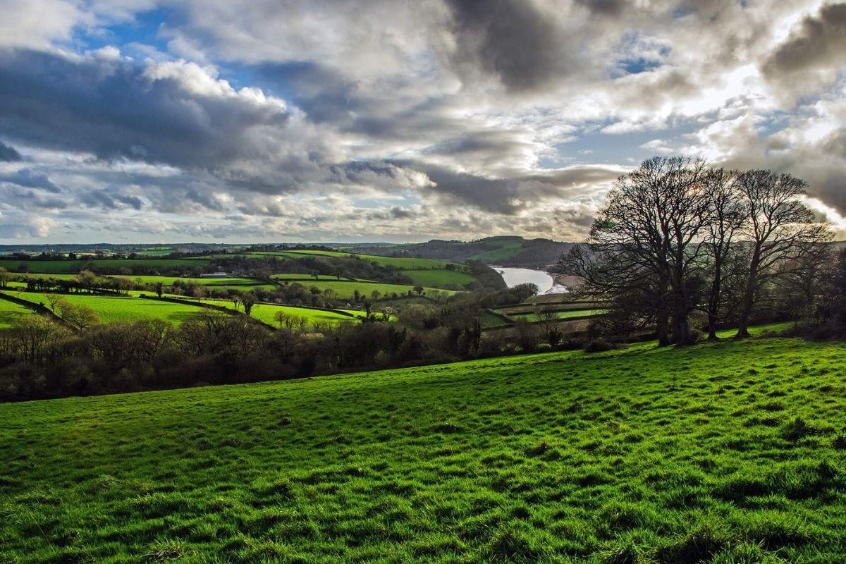 Local Walks Visit Tamar Valley Bridging Devon and Cornwall pic credit Pete Davies
